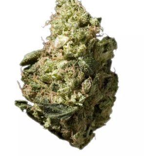 Headband OG Marijuana Flower