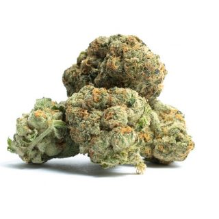 Thin Mint Girl Scout Cookies Weed Flower