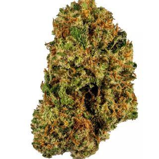 Buy Harlequin Marijuana Flower
